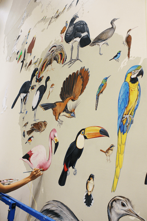 1_Many birds painted by Jane Kim on Slipcovers for your walls, casartblog