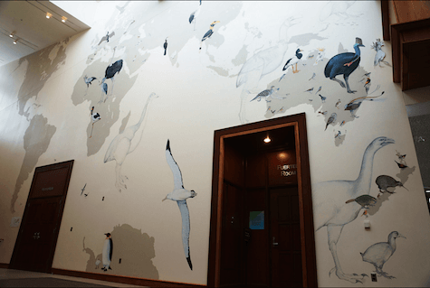 early stage of bird mural_casartblog