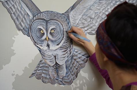 Great grey owl_casartblog